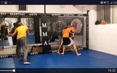 Academy of fighting: perché la paura si rispetta
