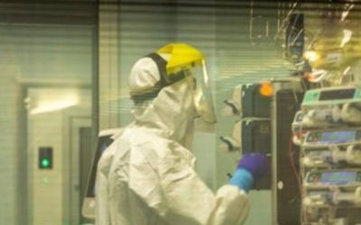 Coronavirus:  follia mediatica e panico ingiustificato